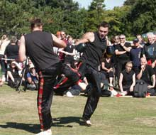 ringwood kickboxing